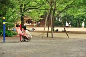 6月の綱島公園