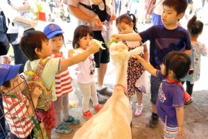 子どもたちに囲まれるヤギさん
