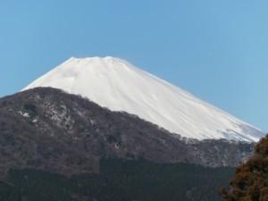 雄大な富士山が目の前に!