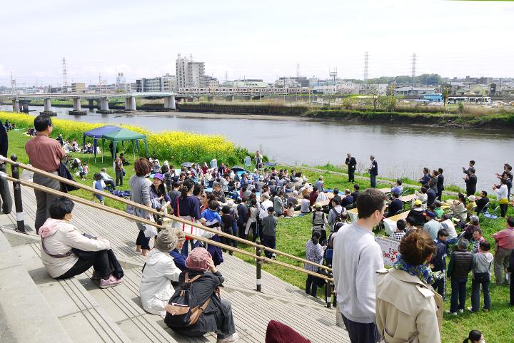菜の花と鶴見川を渡る東横線と広い空